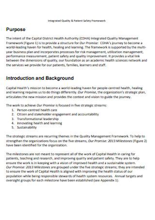 Patient Safety Framework Plan