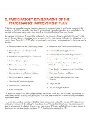 Performance Mannual Improvement Plan
