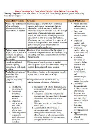 Plan of Nursing Care