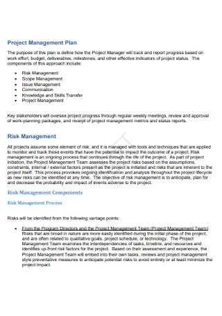 Project and Risk Management Plan