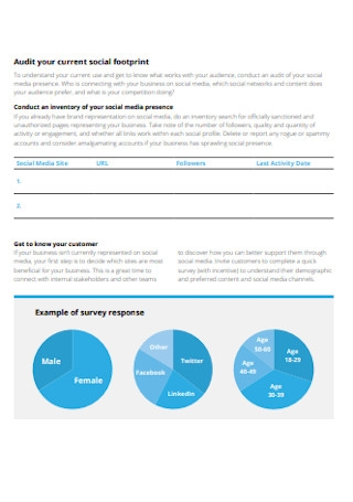 Social Footprint Strategy Plan
