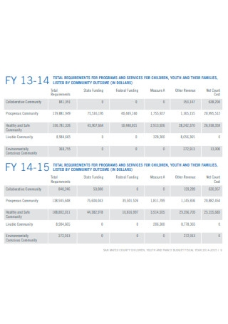 Youth and Family Budget