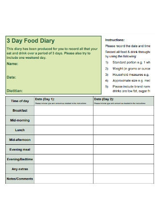 3 Day Food Diary Example