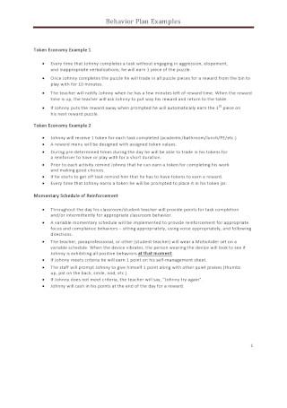 Behavior Plan Example