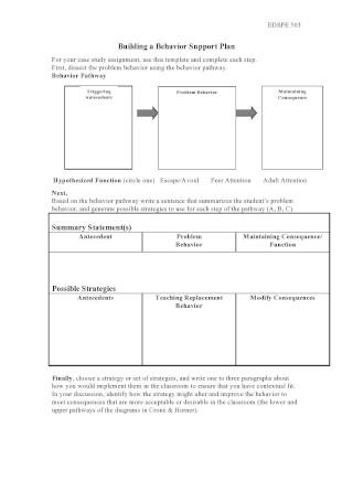 Behavior Support Plan Guide