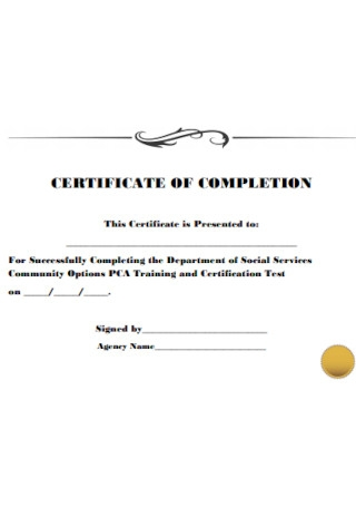 Certificate of Completion in PDF