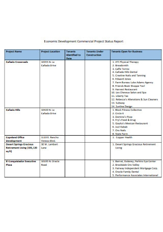 Commercial Project Status Report