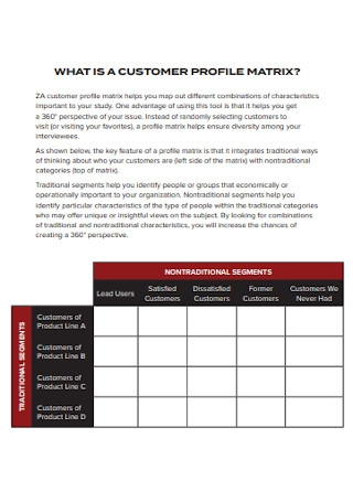 Customer Profile Matrix Example