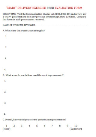 Delivery Exercise Peer Evaluation Form