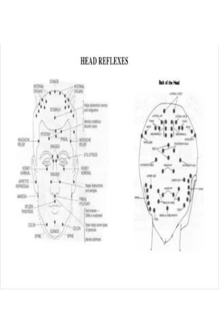 Head Reflexology Chart