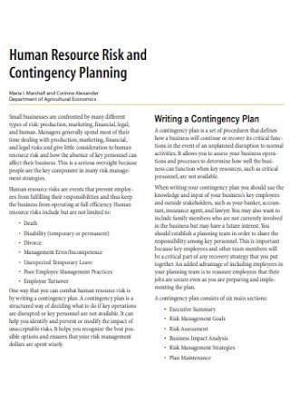 Human Resource and Contingency Plan