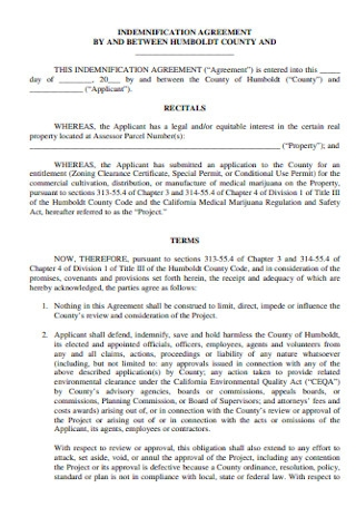 Indemnification Agreement Format