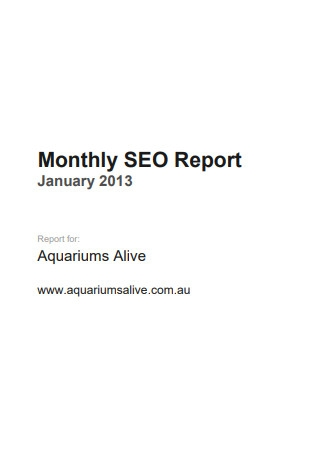 Monthly SEO Report