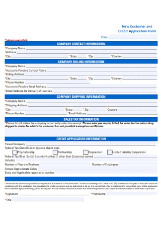 New Customer and Credit Application Form