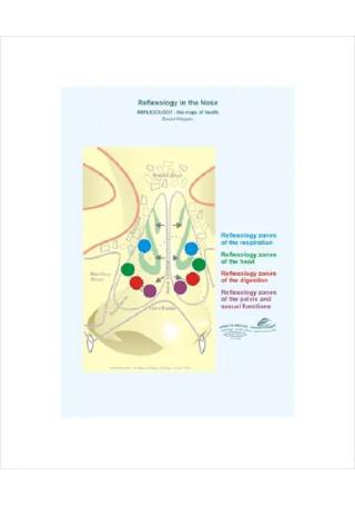 Nose Reflexology Chart