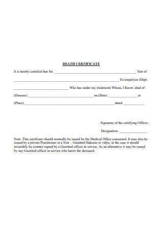 Printable Death Certificate
