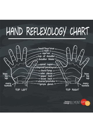 21+ SAMPLE Reflexology Charts in MS Word | PDF