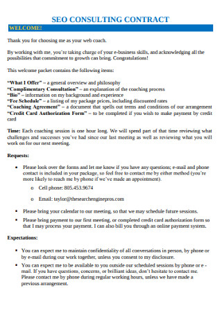 SEO Consulting Contract