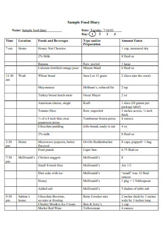 Sample Food Study Diary
