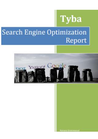 Search Engine Optimization Report Sample