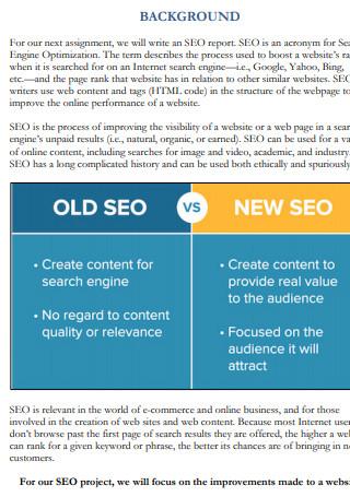 Search Engine Optimization Report