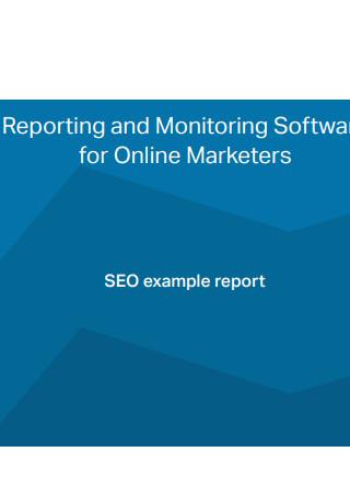 Seo Example Report