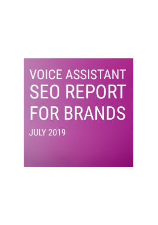 Seo Report for Brands