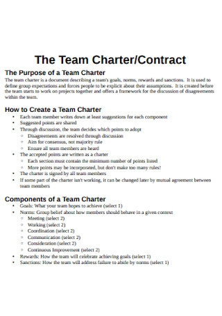 Team Charter and Contract