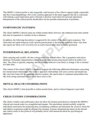 Child Custody Interpretive Report