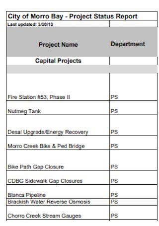 City Project Status Report