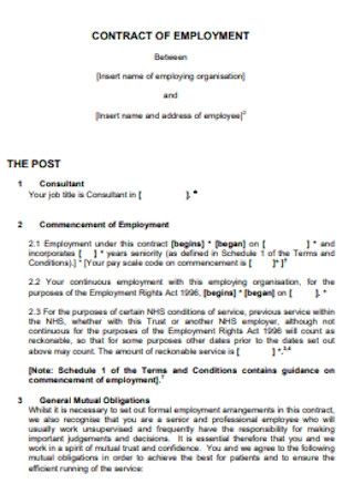 Consultant Contract for Employment