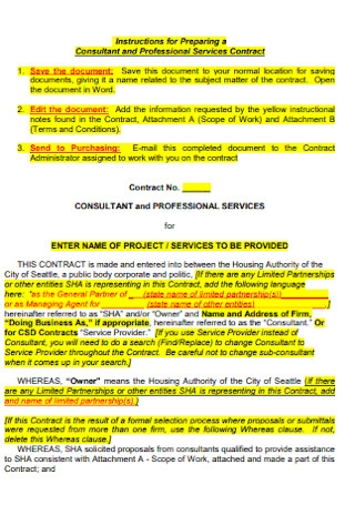 Consultant and Professional Services Contract