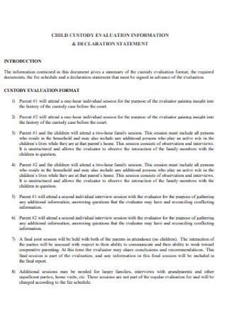 Custody Evaluation Information Report