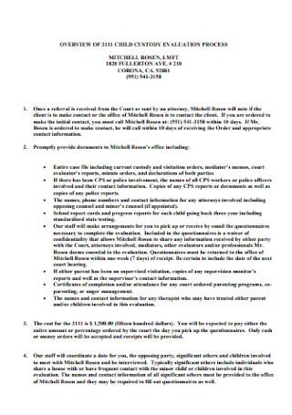 Custody Evaluation Process Report