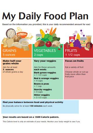 Daily Food Plan