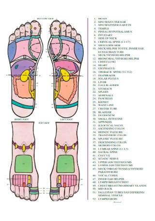 Foot Reflexology Chart Example