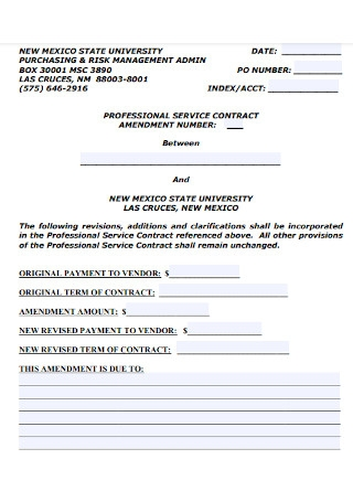 Professional Service Contract Amendment