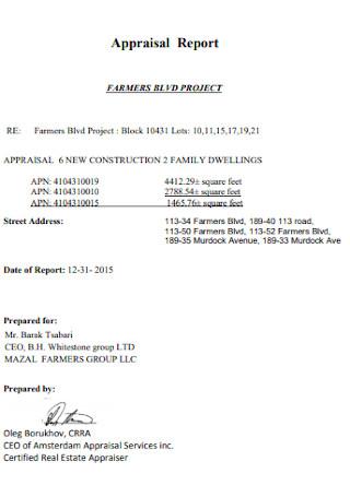 Project Appraisal Report Format