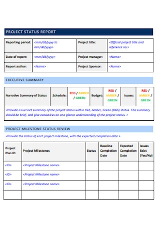 Project Planning Status Report