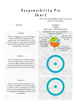 Responsibility Pie Chart