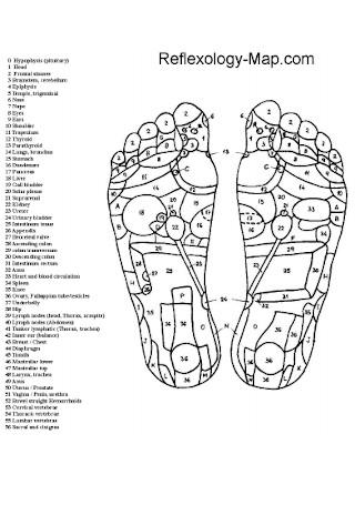 Simple Foot Reflexology Chart