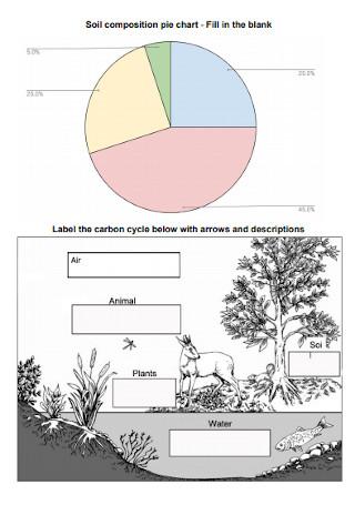 Soil Composition Pie Chart