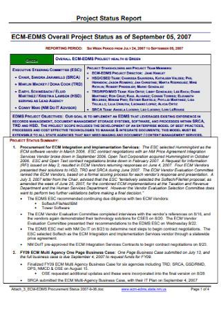 Standard Project Status Report