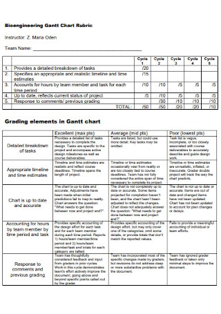 Bioengineering Gantt Chart