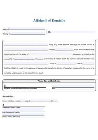 Affidavit of Domicile Example