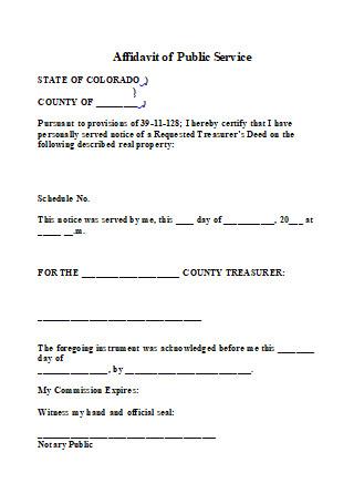 Affidavit of Public Service