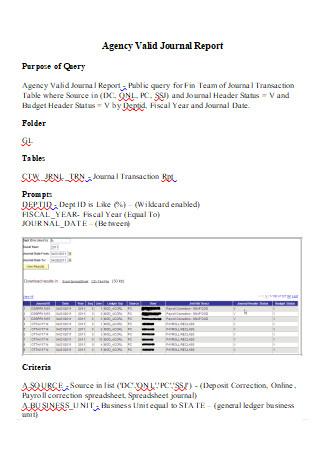 Agency Valid Journal Report