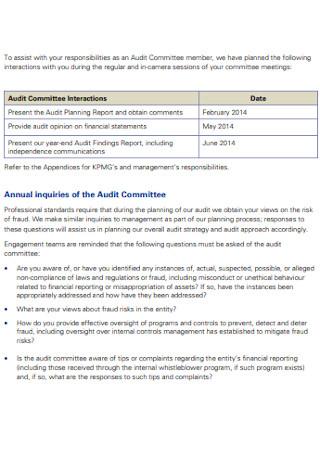 Audit Planning Report