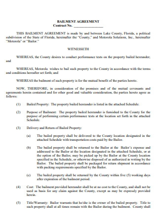 Bailment Agreement Example