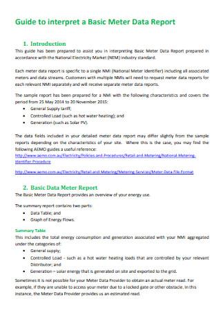 Basic Meter Data Report